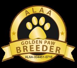 Happy Time Golden Paw Logo 2020